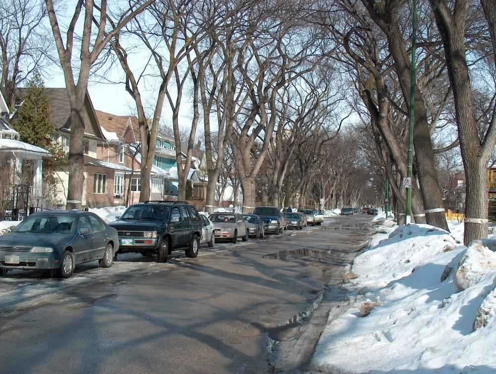 Фотографии Виннипега. Старые кварталы Ривер Хайтз (River Heights)