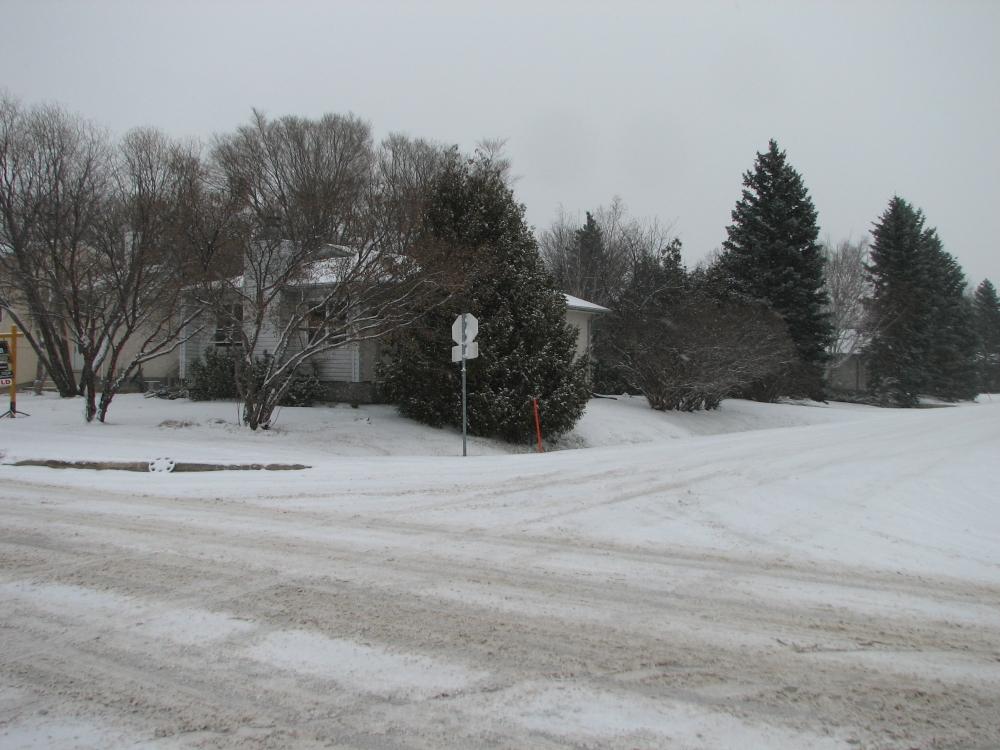 Фотографии Виннипега. Charleswood в ноябре.